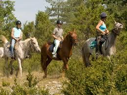 Promenades equestres